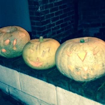 Pumpkin 2015 2